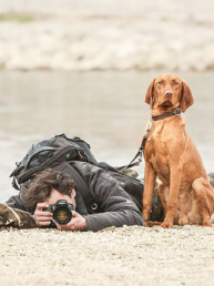 fotózás kutyákkal