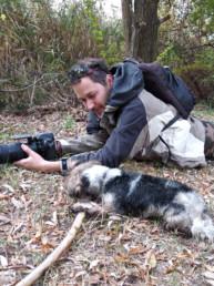 kutyák fotózása a természetben